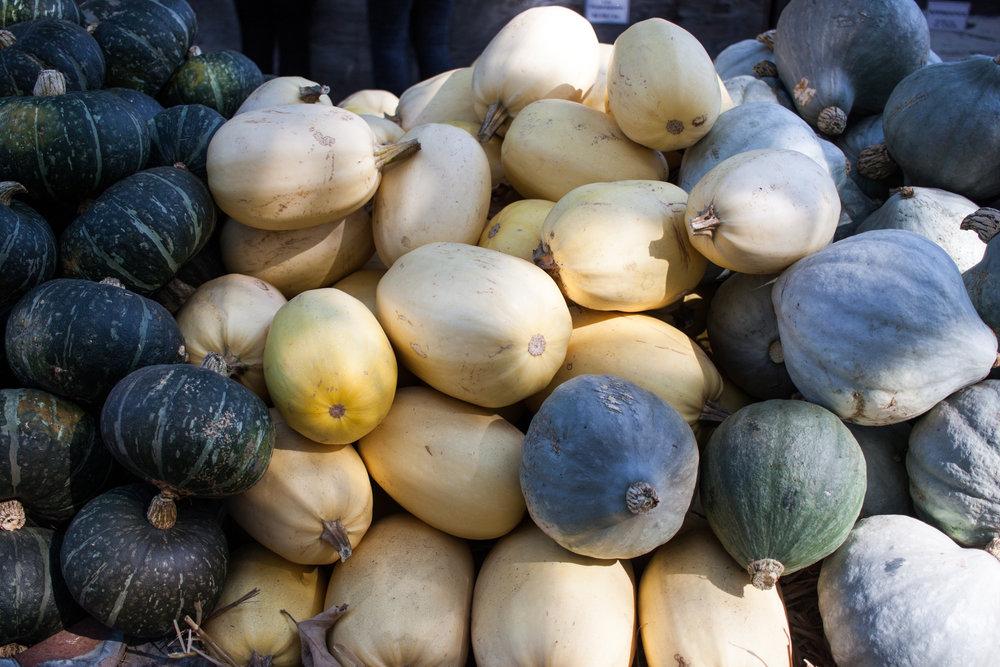 pumpkins18-34.jpg