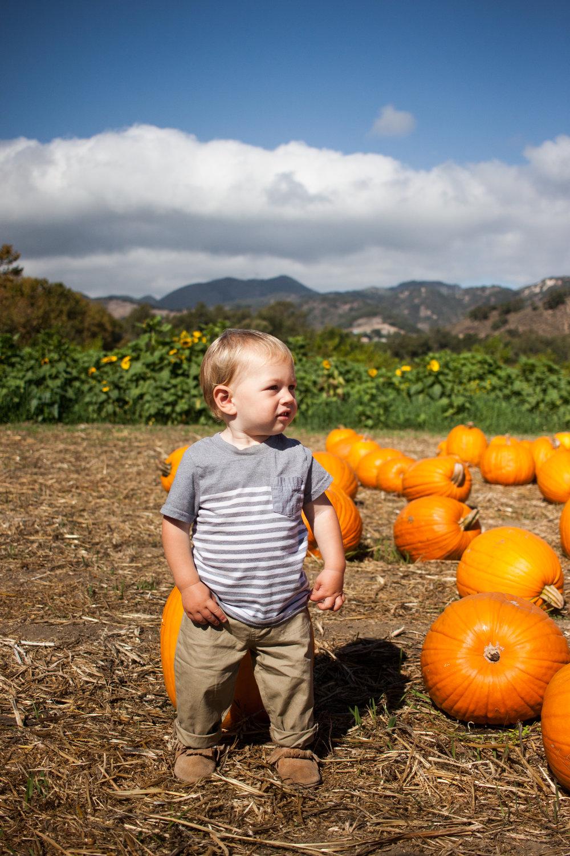 pumpkins18-39.jpg