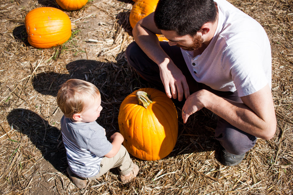 pumpkins18-69.jpg