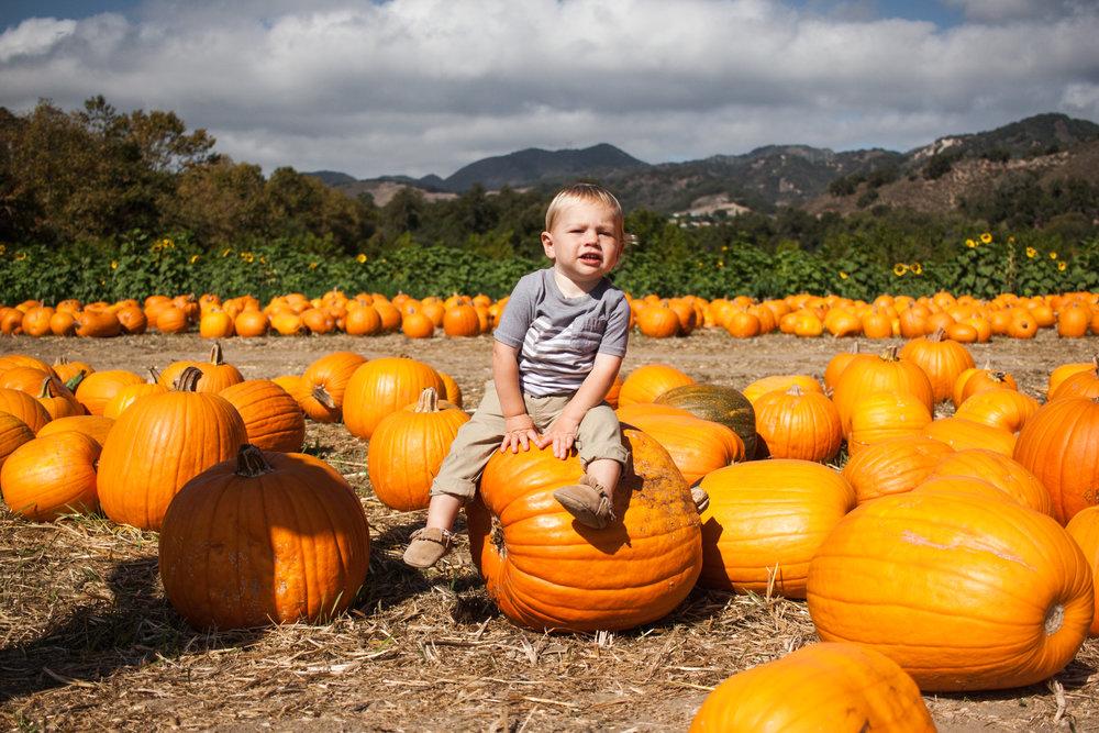 pumpkins18-73.jpg