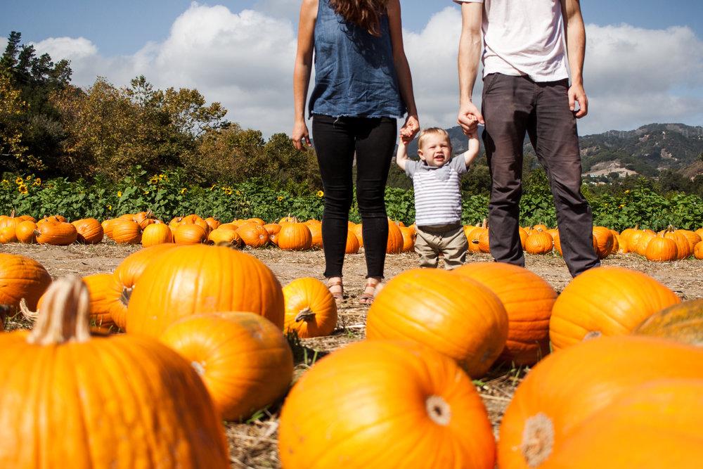 pumpkins18-88.jpg