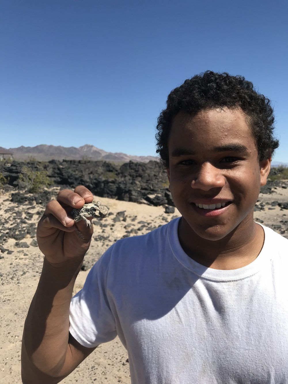 Kevin finds his 1st Horned Lizard!