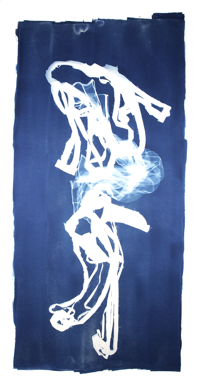 Mary Beth Heffernan  Blue 2 , 2011 96x51 inch cyanotype photogram Unique