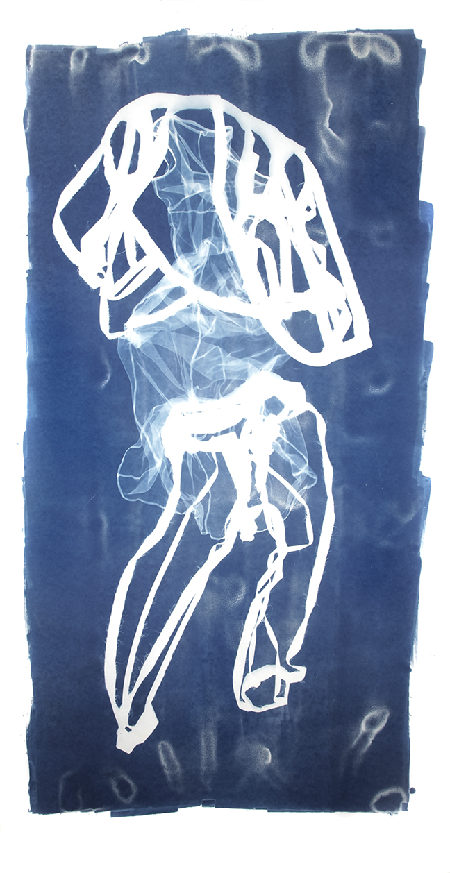 Mary Beth Heffernan  Blue 5 , 2011 96x51 inch cyanotype photogram Unique
