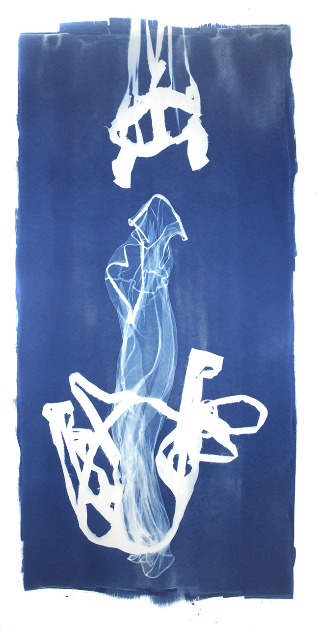 Mary Beth Heffernan  Blue 7 , 2011 96x51 inch cyanotype photogram Unique