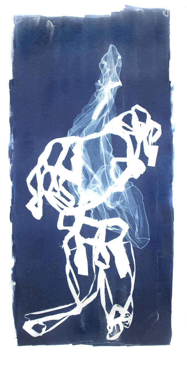 Mary Beth Heffernan  Blue 6 , 2011 96x51 inch cyanotype photogram Unique