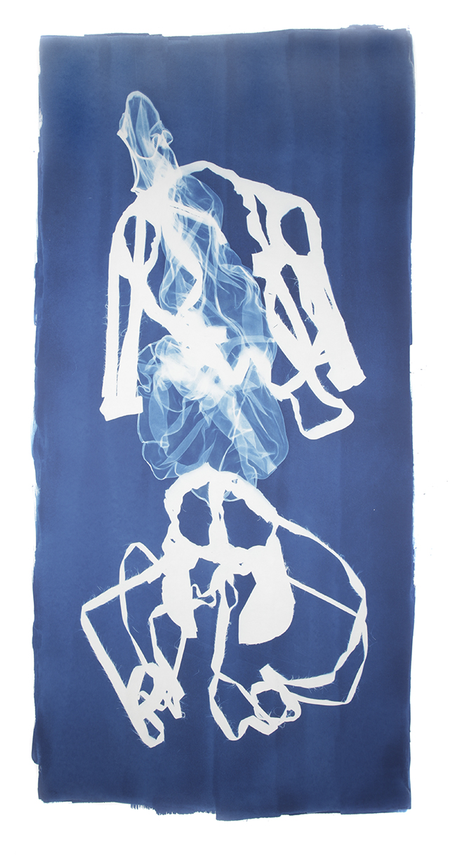 Mary Beth Heffernan  Blue 8 , 2011 96x51 inch cyanotype photogram Unique
