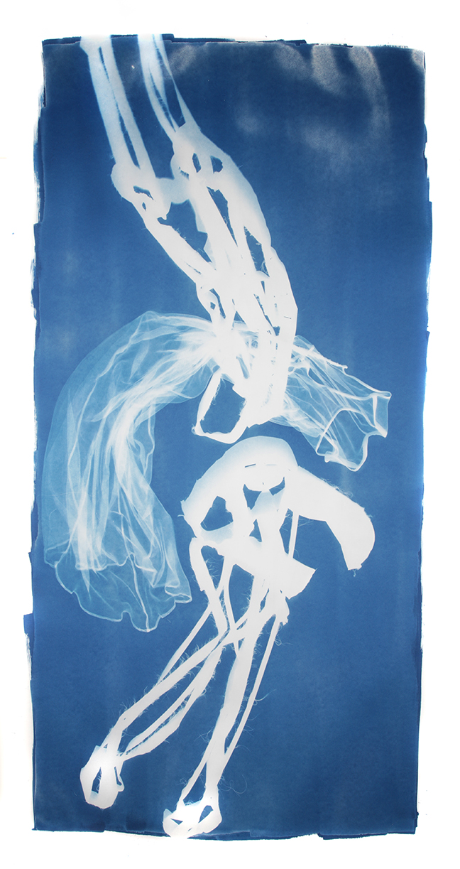 Mary Beth Heffernan  Blue 9 , 2011 96x51 inch cyanotype photogram Unique