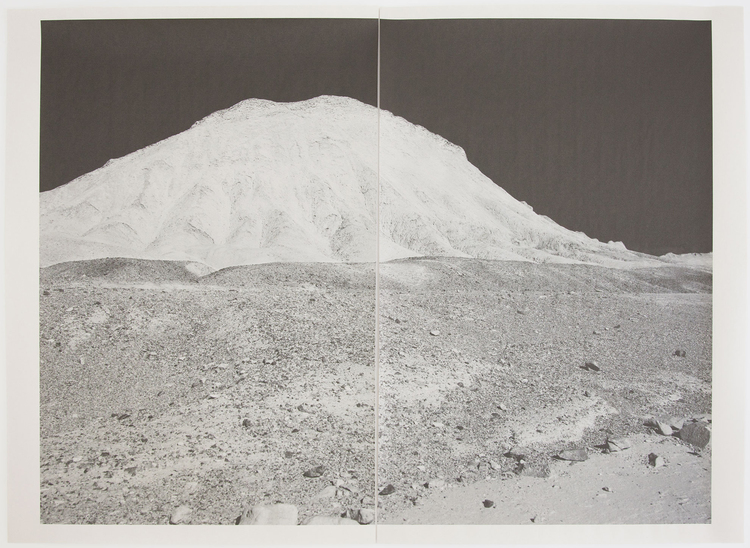 Alia Malley  DV_8335 , 2013 / 2015 From the series,  Captains of the Dead Sea  Unique diptych pigment print on newsprint Sheet: 36 x 24 inches / Framed: 26.25 x 35.25 inches