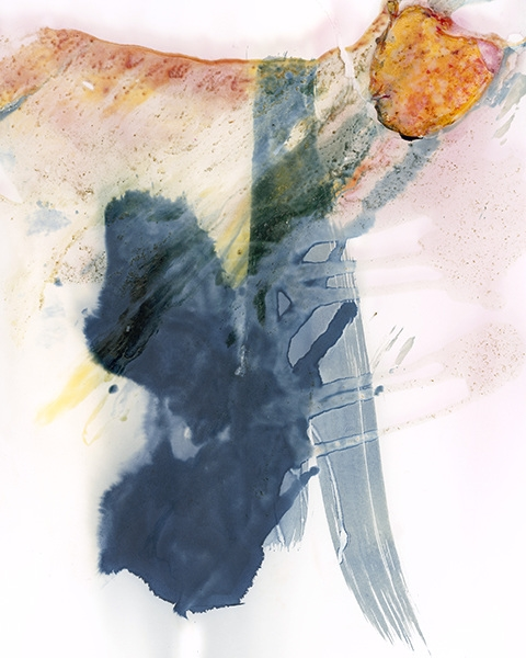 Arden Surdam  Their Tangy California Gravy,  2015  Turkey, Mayonnaise, Lettuce, Tomatoes, Wheat Bread, Gum Bichromate, Inkodye, Cyanotype  From the series  How to Tell When It's Done  Number 1 from a Limited Edition of 2 with 2 APs Archival Pigment Print, 40 x 50 inches
