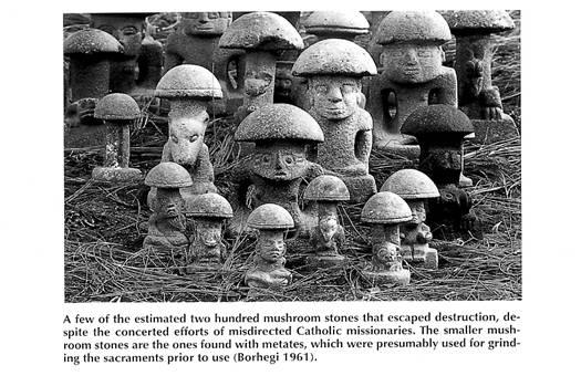 17.MushroomIdol01.jpg