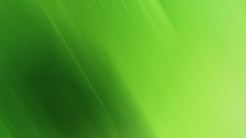 green-wallpaper-7612-8040-hd-wallpapers.jpg