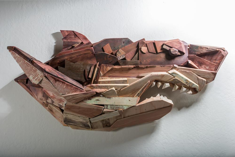 abel-shark.png