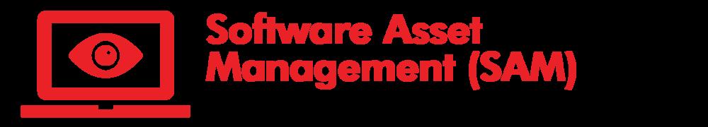 UXC Red Rock Licensing - Software Asset Management Header