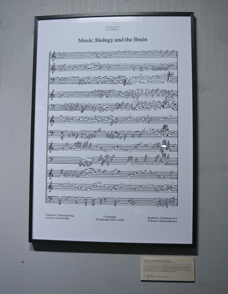 music-biology-and-the-brain_tovajertfelt2014