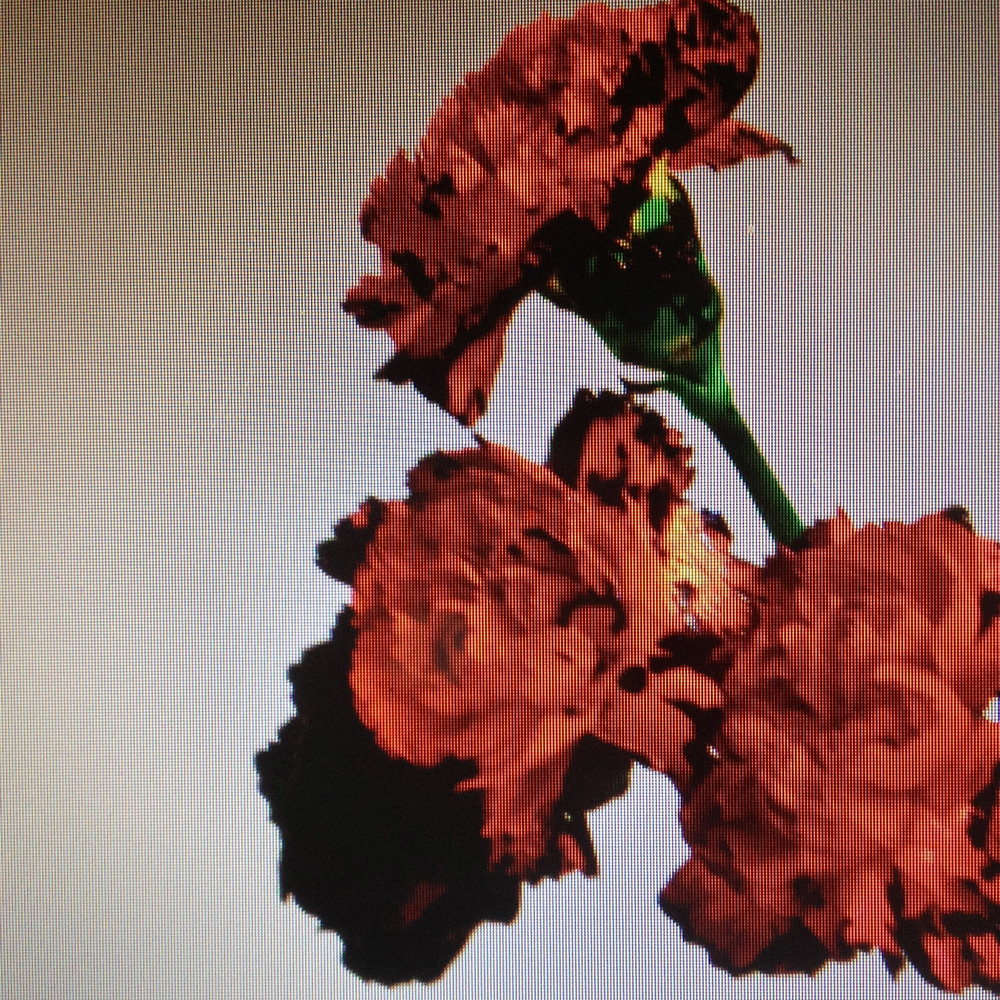 johnlegend-made-to-love-artwork.jpg