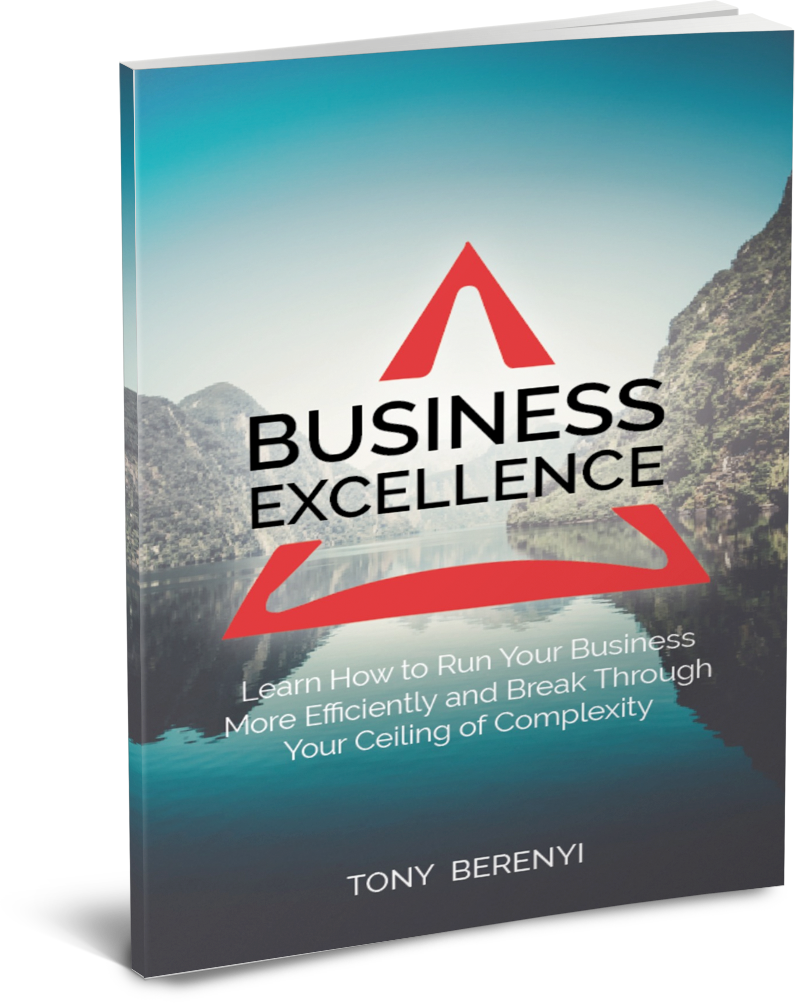 Business Excellence by Tony Berenyi