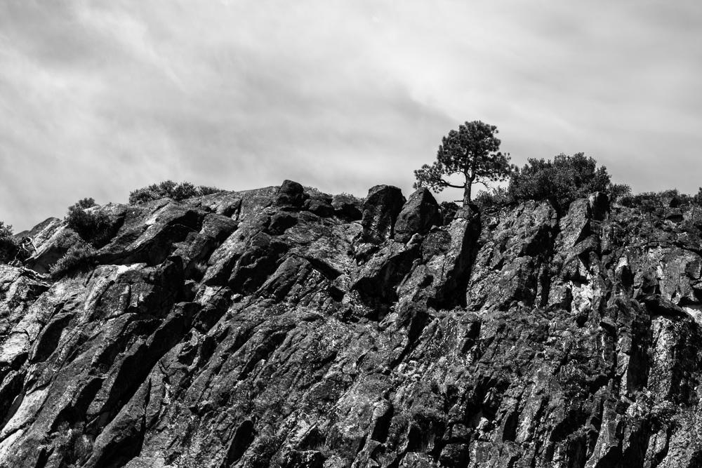 Landscape_Mediate-25.jpg