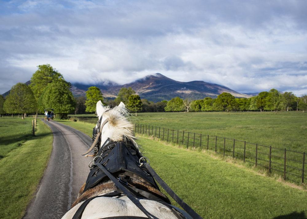 Ireland_2017_0022.jpg