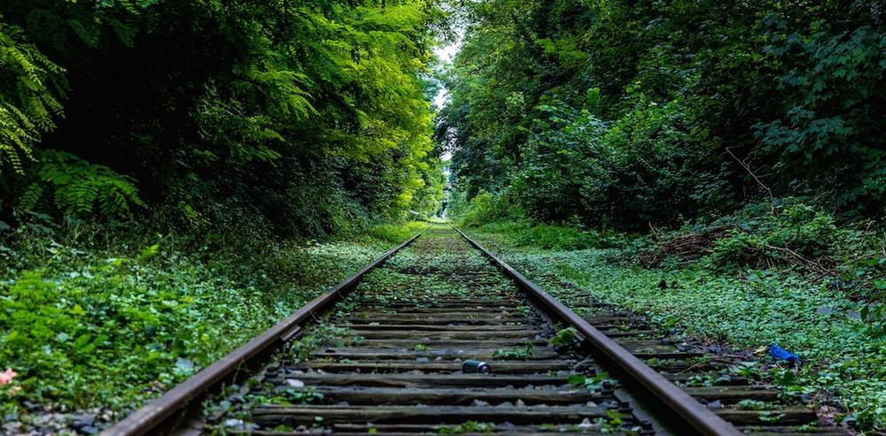 right-track.jpg