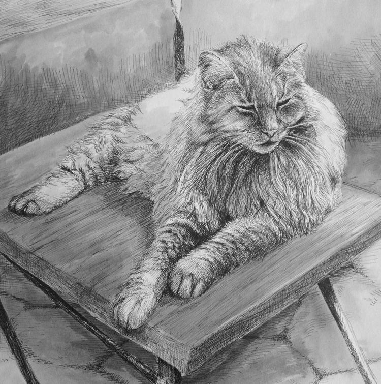 moosethecat