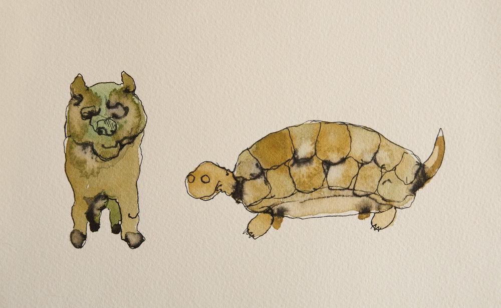 animalWatercolor-3.jpg