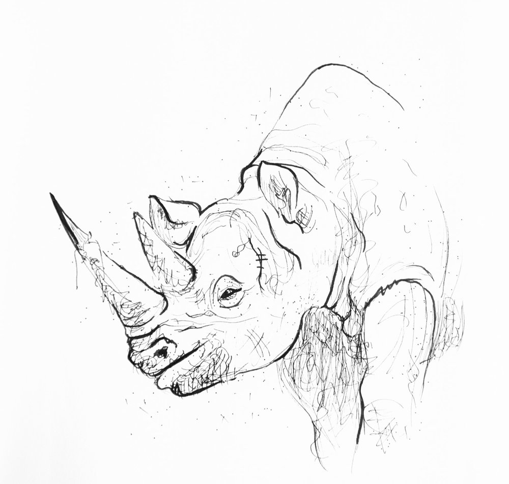 animalSketches-2.jpg