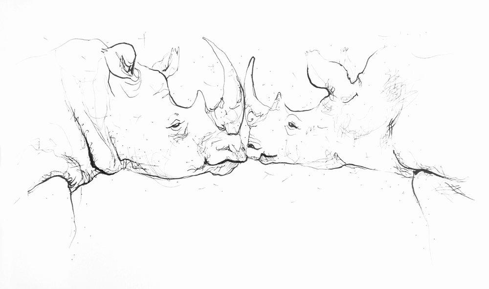 animalSketches-7.jpg