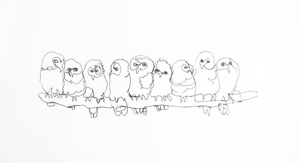 animalSketches-8.jpg