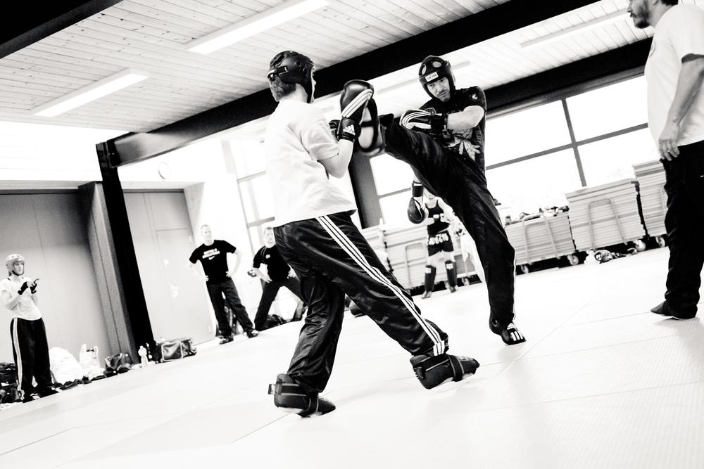 Kickboxing-Academy_Trainingslager_Juni 2015-083.jpg