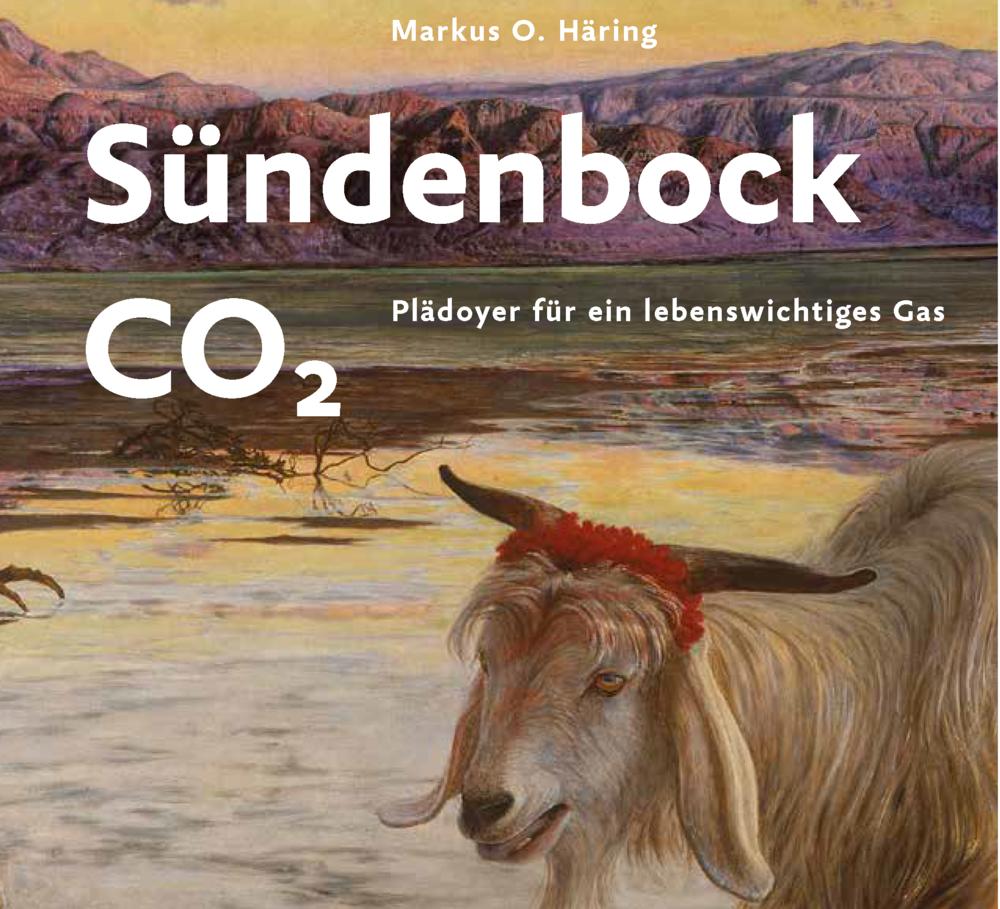 Umschlag_Sündenbock.png