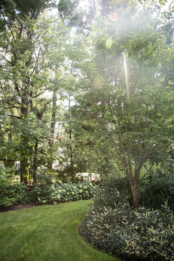 John de Lellis Gardens 15.jpg