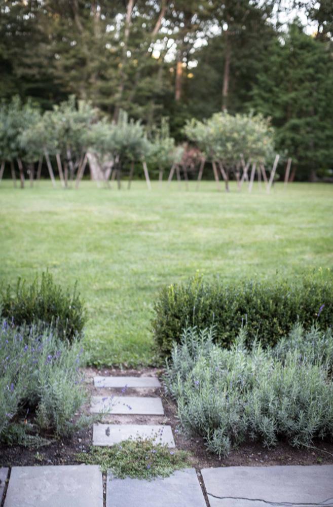 John de Lellis Gardens 410.jpg