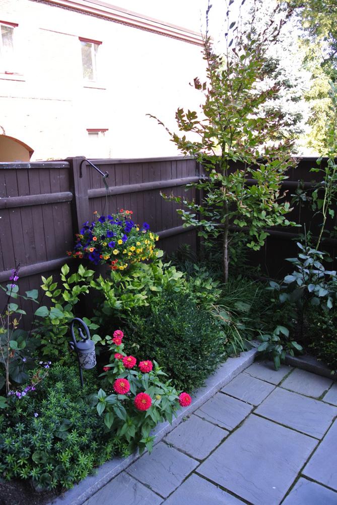 John de Lellis Gardens 51.jpg