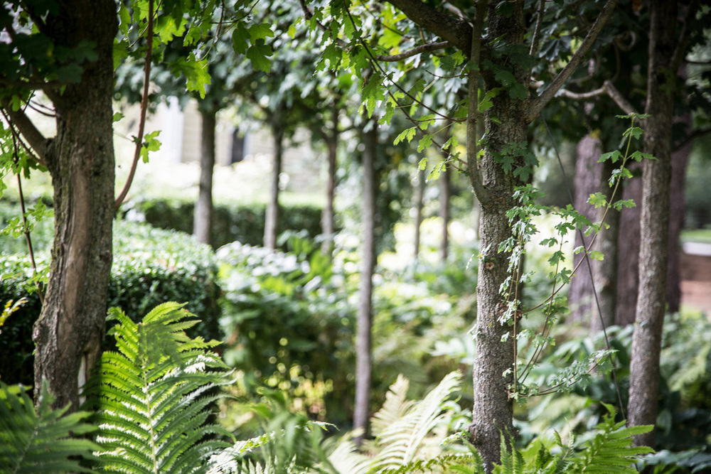 John de Lellis Gardens 812.jpg