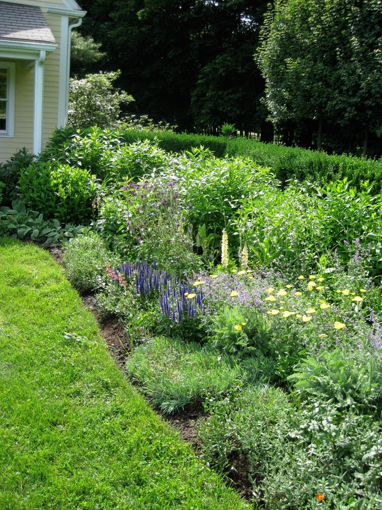 John de Lellis Gardens 824.jpg