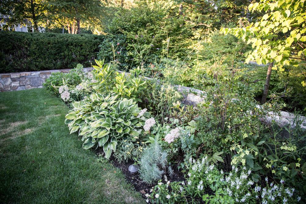 John de Lellis Gardens 112.jpg