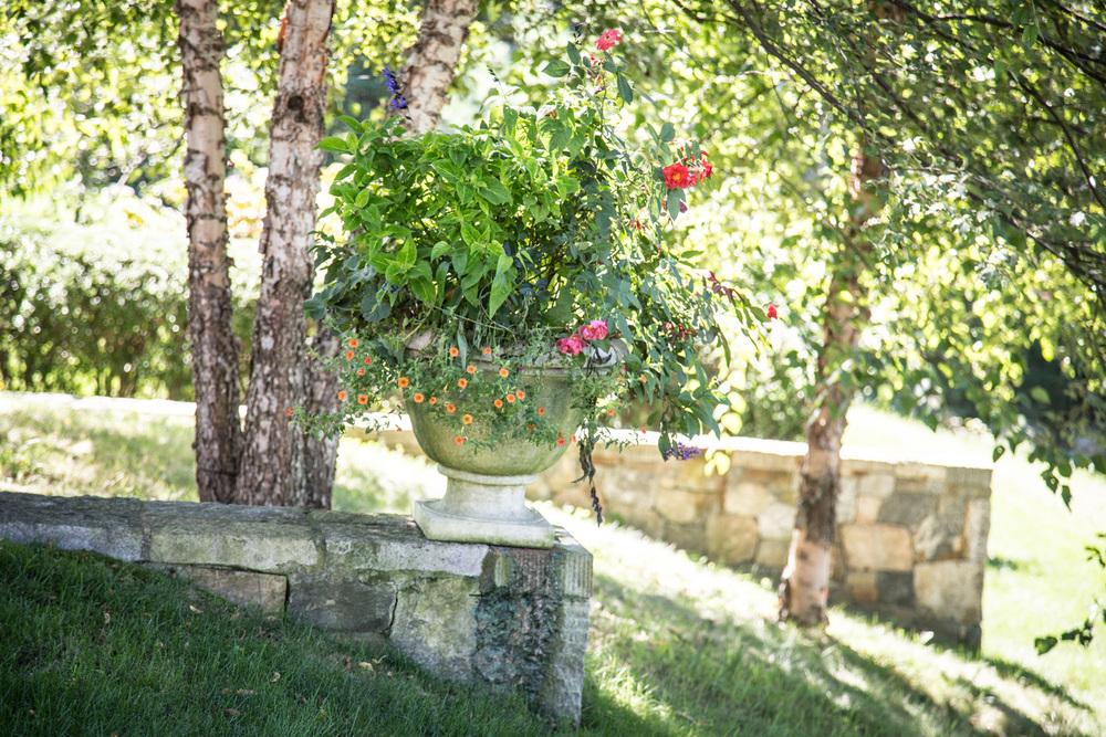 John de Lellis Gardens 1119.jpg
