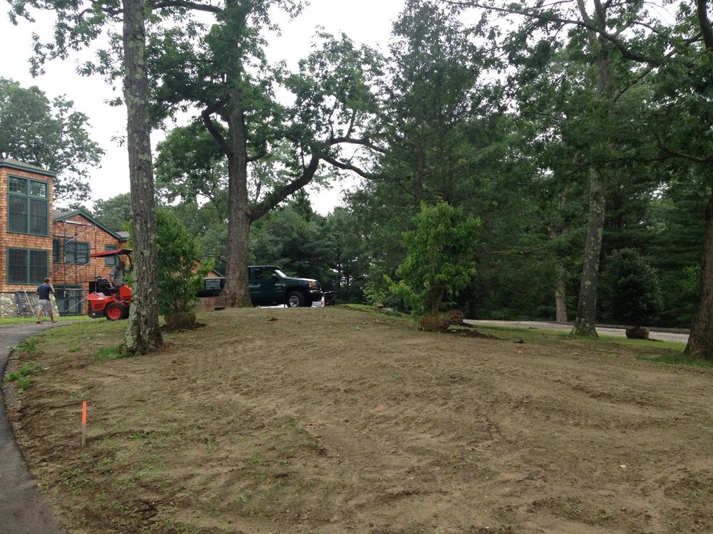 13_Cedar Knoll Foundation Planting before.jpg