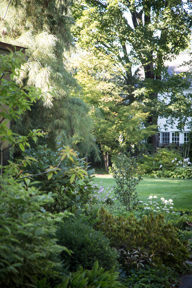 John de Lellis Gardens 1323.jpg