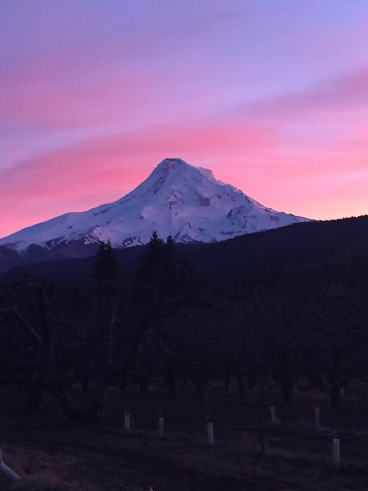 sunset Mt. Hood