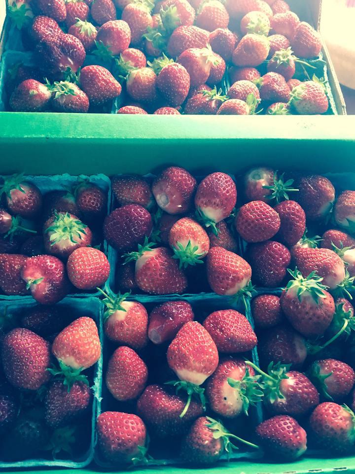 Strawberry jam 2015