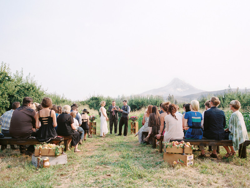 Wedding Ceremony in our orchard meadow