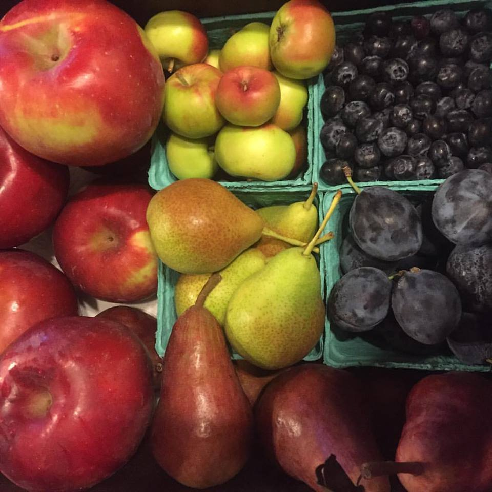 An example week of our All Fruit CSA! Eat the rainbow!