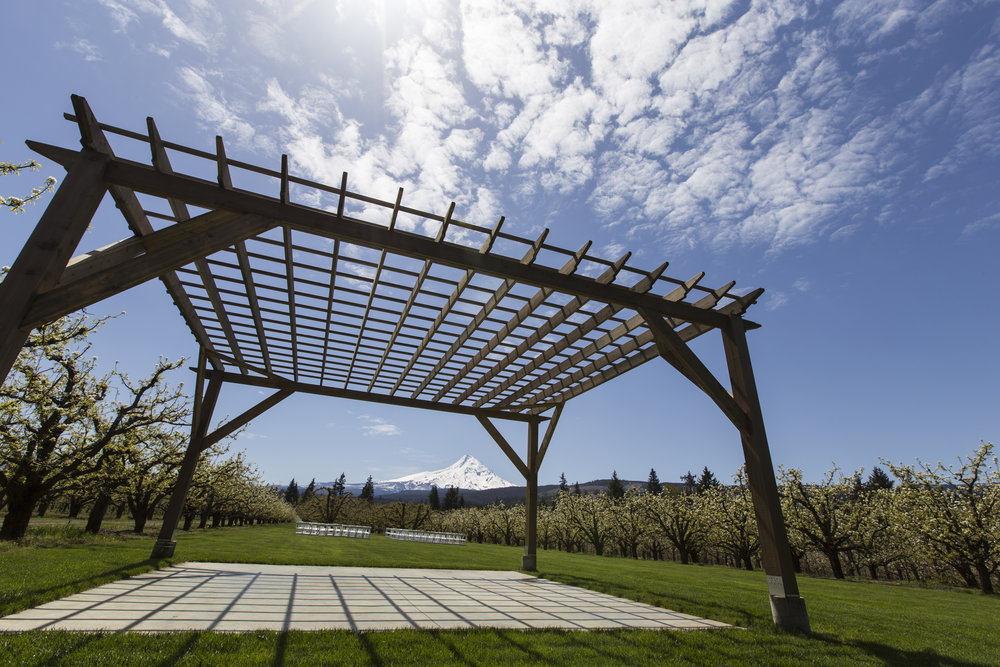 Introducing our new pergola over the dance floor. photo by Larvickmedia