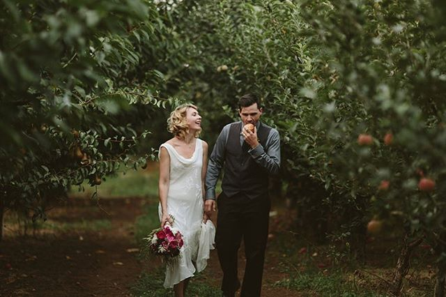 There are endless benefits from getting married in an apple orchard @mtvieworchards 🍎 reach out today to take a tour by heading to the link in our profile. #mtvieworchardsweddings #orchardwedding #appleorchardwedding #orchardwedding #mthoodwedding #hoodriverwedding #columbiagorgewedding #farmtotable #farmtofork #farmtotablereceptions #wedding #destinationwedding #theknot #weddingwire #marthastewartweddings 📷@lukeandmallory