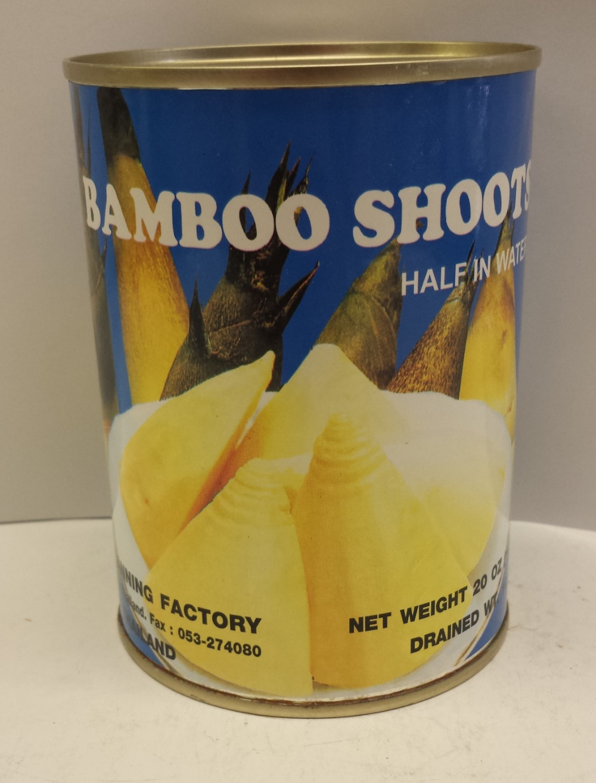 Bamboo Shoot, Half in Water    Singing Bird    BBH1723 24x20 oz
