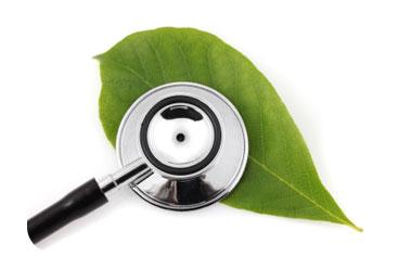 Alternative Medicine design.jpg