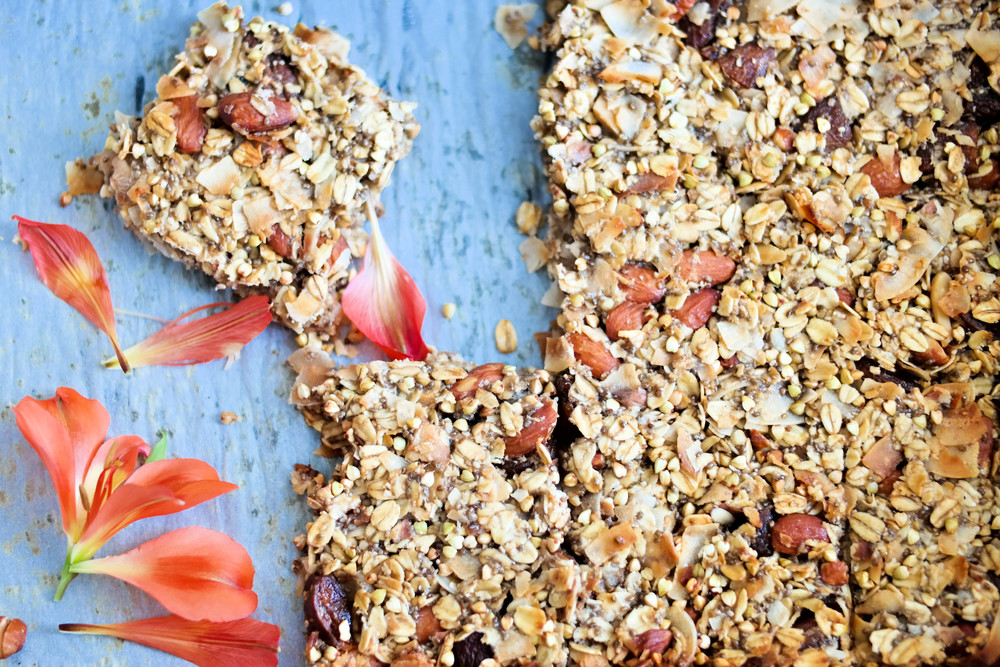 The-Best-Apricot-and-Coconut-Bars | www.8thandlake.com
