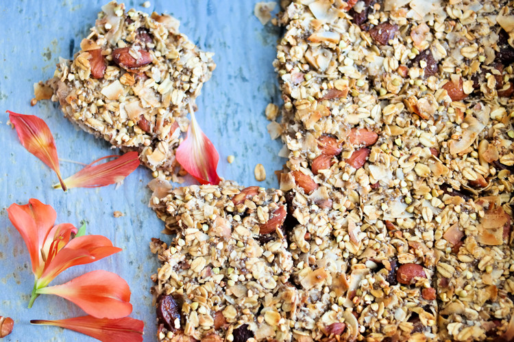 The-Best-Apricot-and-Coconut-Bars+|+www.8thandlake.com